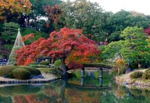 Du lịch Nhật Bản mùa thu